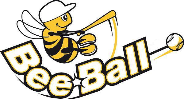 BeeBall-zw-123-3